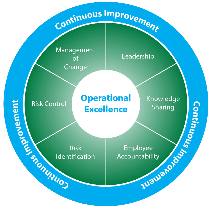 operational excellence msi section